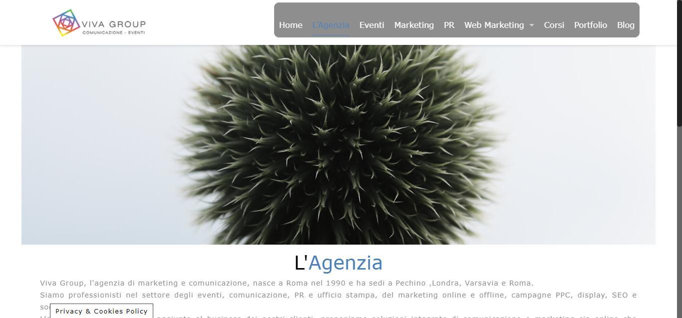 viva group - Agenzia di marketing e comunicazione Viva Group Gianluca Gentile 02 - Viva Group