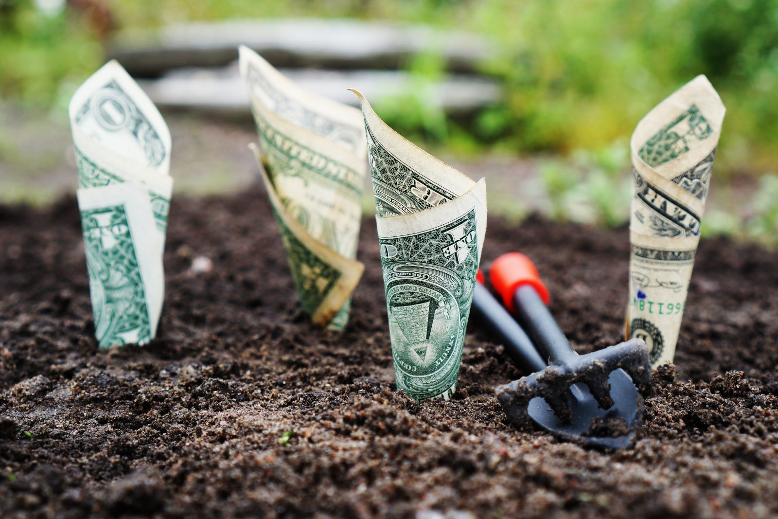 - Idee per fare soldi online - Idee per fare soldi online